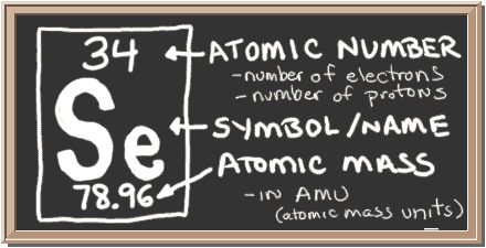 chalkboard with description of periodic table notation for selenium  there  is a square with three